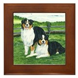 Austrailian Shepherd Tri Framed Tile