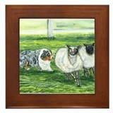 Austrialian Blue Merle Herdin Framed Tile
