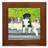 Austrailian Shepherd Puppy Li Framed Tile