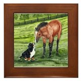 Bernese Mountain Dog Pup and Framed Tile