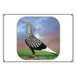 Flight Pigeon With Clouds Banner