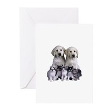 pets Greeting Cards (Pk of 20)
