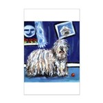 BERGAMASCO SHEEPDOG smiling m Mini Poster Print