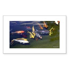 Photography koi Decal