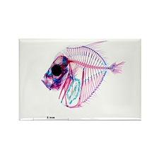 Selene-b Fish Rectangle Magnet