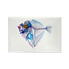 Blue Fish Rectangle Magnet