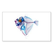 Blue Fish Sticker (Rectangle)