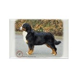 Bernese Mountain Dog 9T066D-221 Rectangle Magnet (