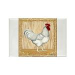 Gold Framed Rooster Rectangle Magnet (100 pack)