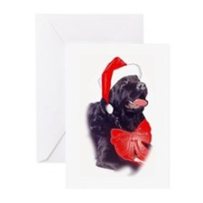 Santa Newf Greeting Cards (Pk of 10)