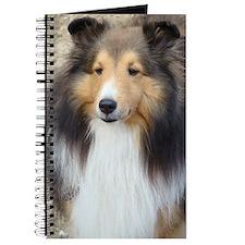 Cute Shetland sheepdog Journal