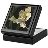 White Orchid Keepsake Box