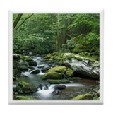 Rock Stream Gatlinburg TN Tile Coaster