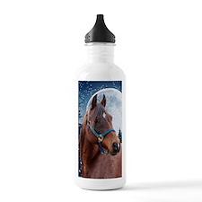 Winter Arabian #3 Water Bottle