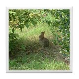 Chesapeake Arboretum Bunny Tile Coaster