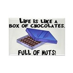 Full Of Nuts Rectangle Magnet (10 pack)