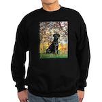 Spring & Black Lab Sweatshirt (dark)