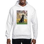 Spring & Black Lab Hooded Sweatshirt