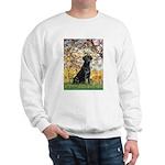 Spring & Black Lab Sweatshirt
