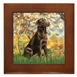 Spring / Choc Lab 11 Framed Tile