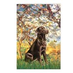 Spring / Choc Lab 11 Postcards (Package of 8)