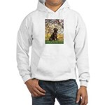 Spring / Choc Lab 11 Hooded Sweatshirt