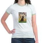 Spring / Choc Lab 11 Jr. Ringer T-Shirt