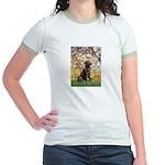 Spring / Choc Lab 11 Jr. Ringer T-Shirt