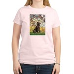 Spring / Choc Lab 11 Women's Light T-Shirt