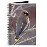 Wax Wing Journal