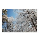 Georgia Snow Postcards (Package of 8)