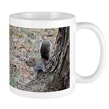 Curious Squirrell Mug