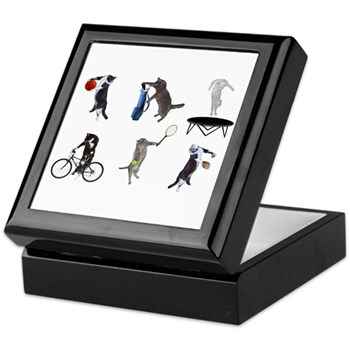 Sports Cats Keepsake Box