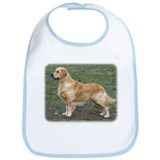 Golden Retriever 9Y186D-072 Bib