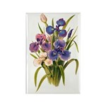 Japanese Irises Rectangle Magnet (100 pack)