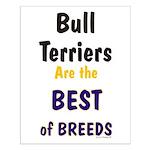 Bull Terrier Best Breeds Small Poster