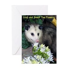 Possum/Opossum Birthday Card