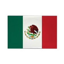 Mexico Flag Rectangle Magnet (10 pack)