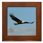 Blue Sky Framed Tile