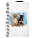 Chihuahuas 9W079D-011 Journal