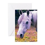 Dapple Grey Arabian Horse Photograph Greeting Card