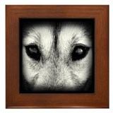 Husky Gifts Framed Tile