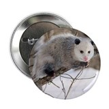 "Opossum Love 2.25"" Button"