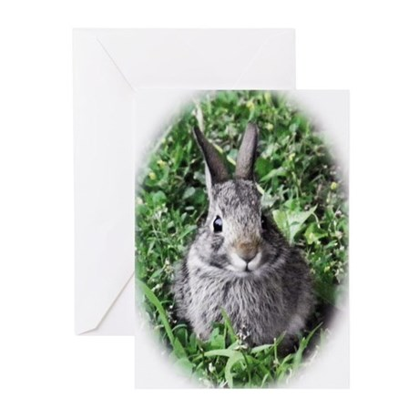 Baby Bunny Greeting Cards (Pk of 20)