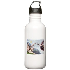 Creation of the Beagle Stainless Water Bottle 1.0L