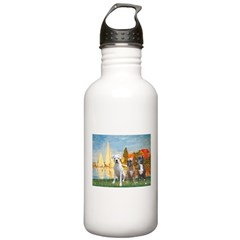 Regatta / 3 Boxers Stainless Water Bottle 1.0L