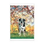 Spring / Catahoula Leopard Dog Mini Poster Print