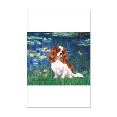 Lily Pond (#5) / Cavalier Posters