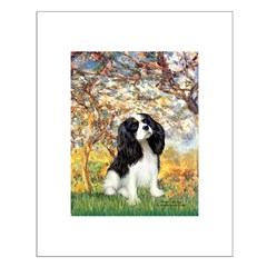 Spring & Tri Cavalier Posters