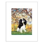 Spring & Tri Cavalier Small Poster